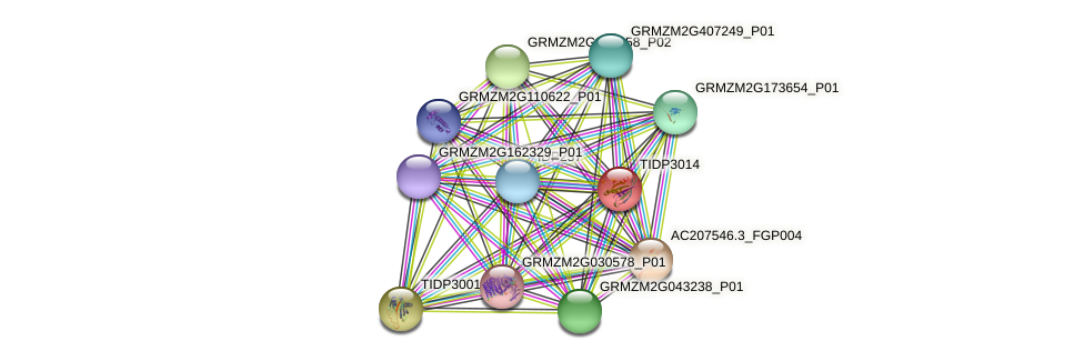 TIDP3014 protein (Zea mays) - STRING interaction network