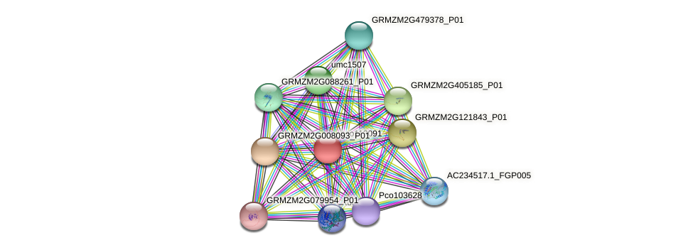 pco113091 protein (Zea mays) - STRING interaction network