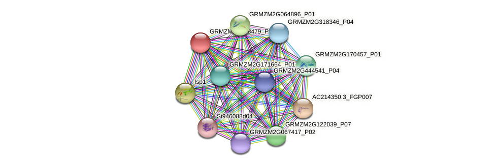 GRMZM2G158479_P02 protein (Zea mays) - STRING interaction network