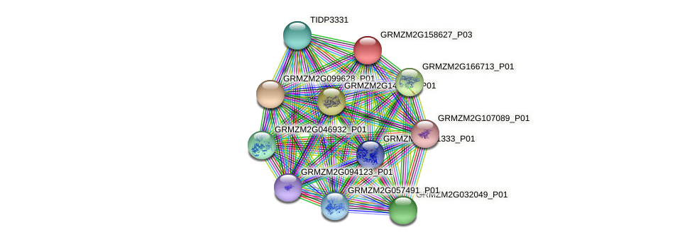 GRMZM2G158627_P03 protein (Zea mays) - STRING interaction network