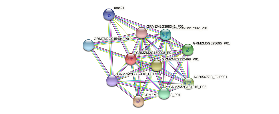 Zm.17647 protein (Zea mays) - STRING interaction network