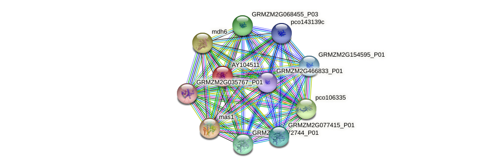 Zm.96069 protein (Zea mays) - STRING interaction network