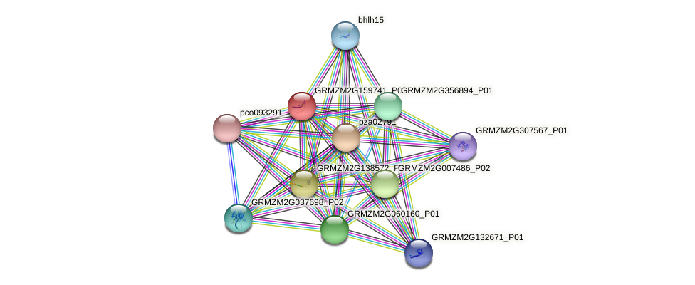 GRMZM2G159741_P01 protein (Zea mays) - STRING interaction network
