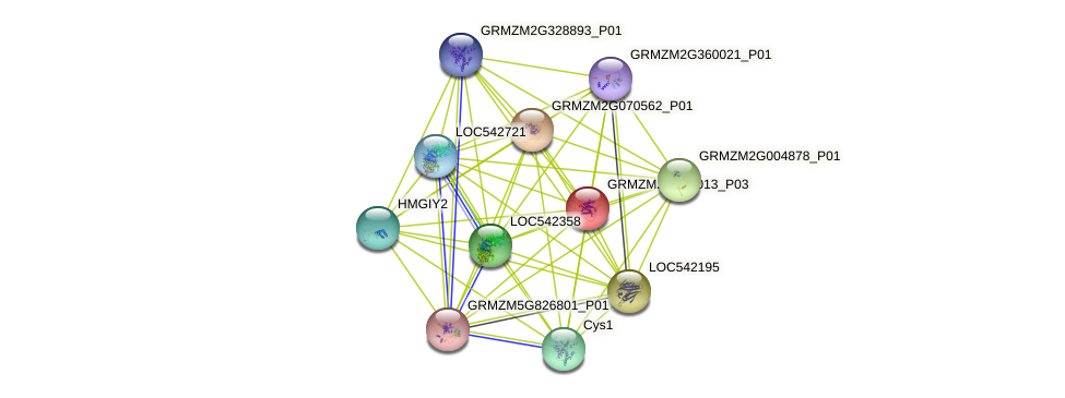100217198 protein (Zea mays) - STRING interaction network