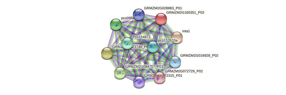Zm.92758 protein (Zea mays) - STRING interaction network