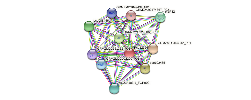 Zm.84716 protein (Zea mays) - STRING interaction network