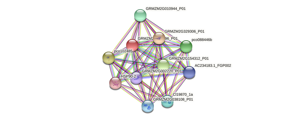 GRMZM2G163796_P01 protein (Zea mays) - STRING interaction network