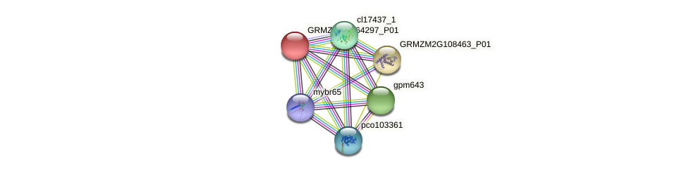 GRMZM2G164297_P01 protein (Zea mays) - STRING interaction network