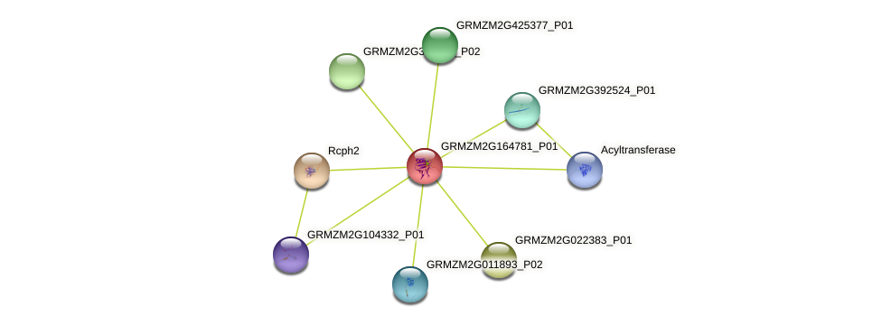 Zm.7159 protein (Zea mays) - STRING interaction network
