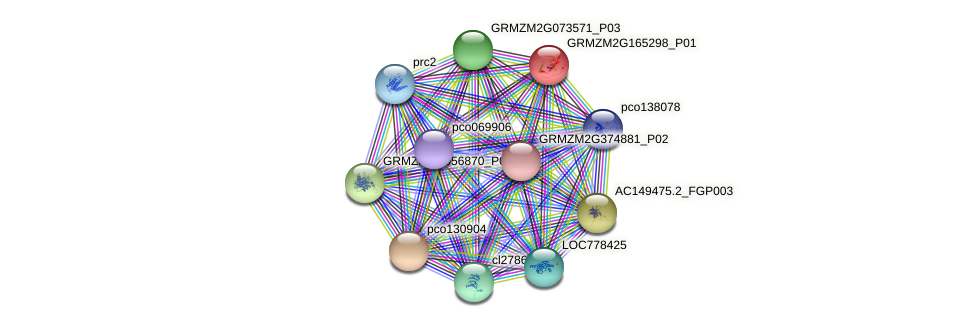 GRMZM2G165298_P01 protein (Zea mays) - STRING interaction network