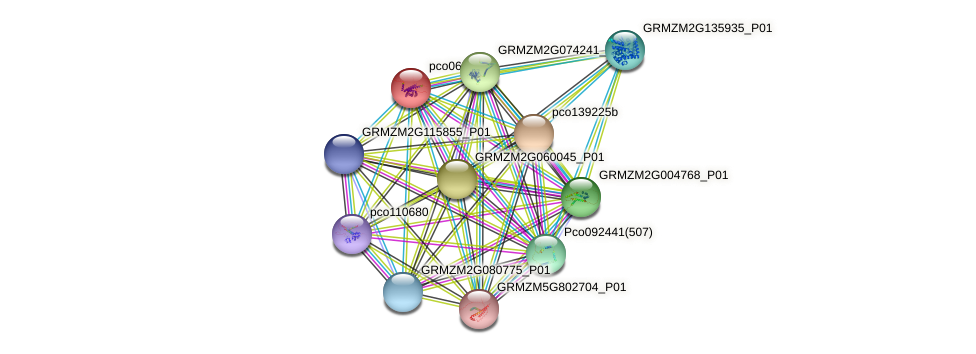 pco068646 protein (Zea mays) - STRING interaction network