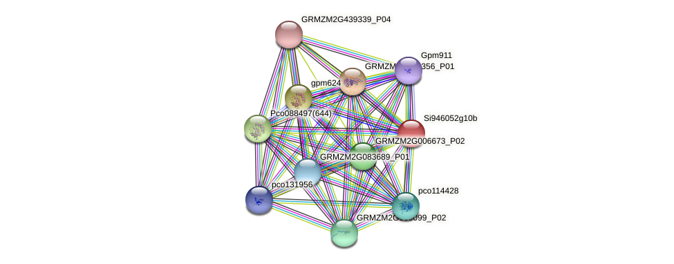 GRMZM2G166780_P02 protein (Zea mays) - STRING interaction network