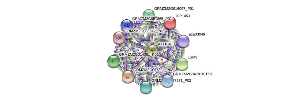 IDP1453 protein (Zea mays) - STRING interaction network