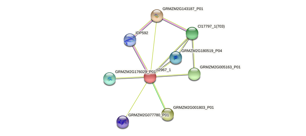 cl2967_1 protein (Zea mays) - STRING interaction network