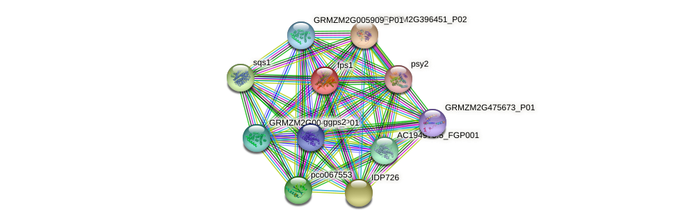 FPS protein (Zea mays) - STRING interaction network