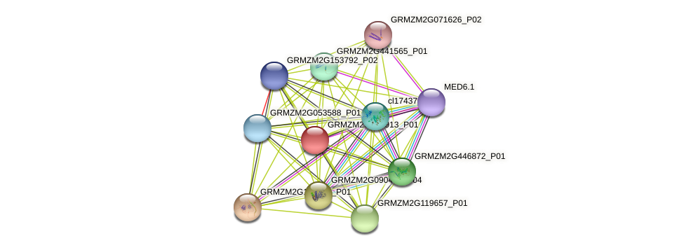 Zm.34115 protein (Zea mays) - STRING interaction network