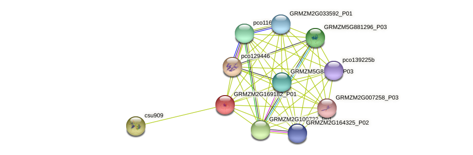 Zm.3083 protein (Zea mays) - STRING interaction network