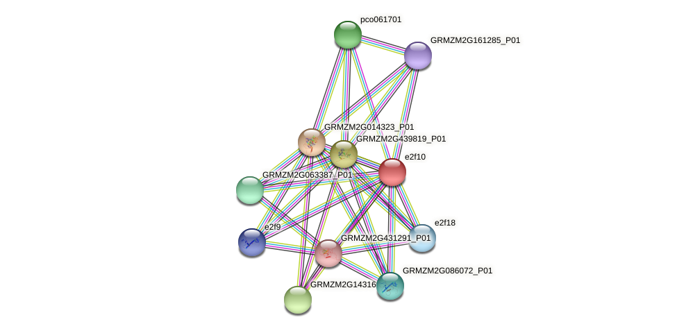 Z214A02.27 protein (Zea mays) - STRING interaction network
