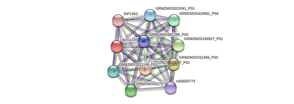 pco111553 protein (Zea mays) - STRING interaction network