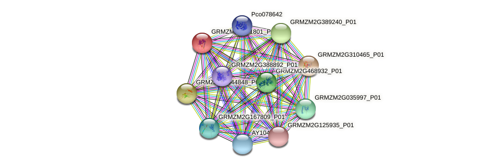 Zm.20616 protein (Zea mays) - STRING interaction network