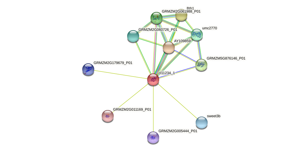 cl11234_1 protein (Zea mays) - STRING interaction network