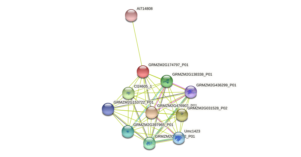 Zm.82321 protein (Zea mays) - STRING interaction network
