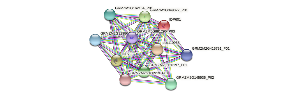 IDP601 protein (Zea mays) - STRING interaction network