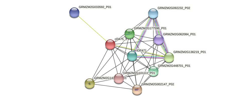 cl3475_1 protein (Zea mays) - STRING interaction network