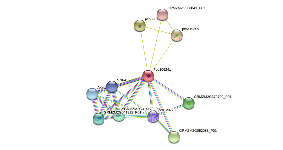 Zm.94640 protein (Zea mays) - STRING interaction network