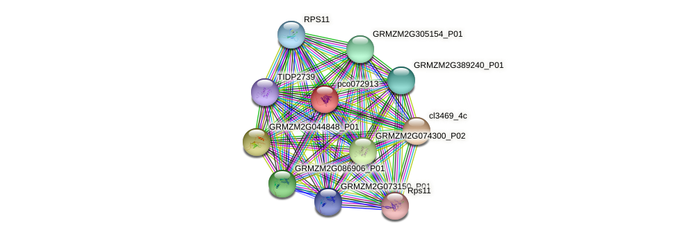 pco072913 protein (Zea mays) - STRING interaction network
