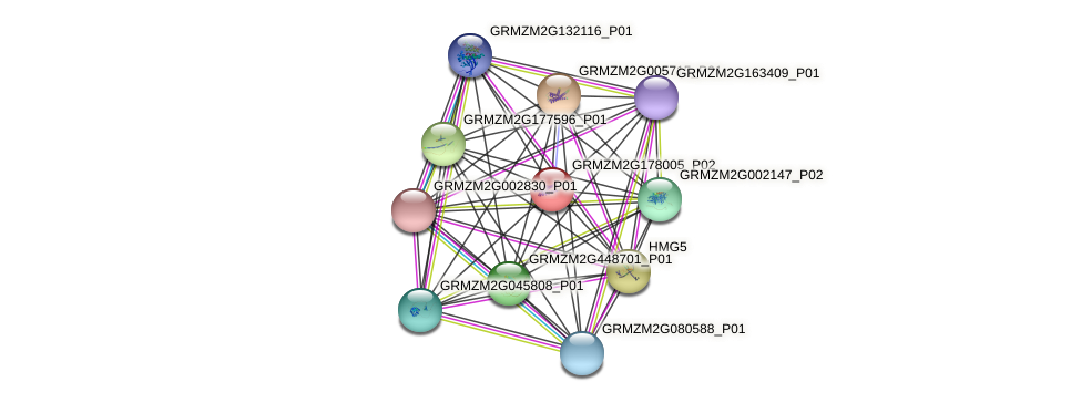Zm.6726 protein (Zea mays) - STRING interaction network