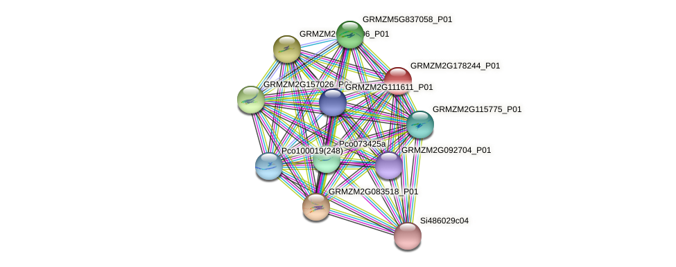 IDP583 protein (Zea mays) - STRING interaction network