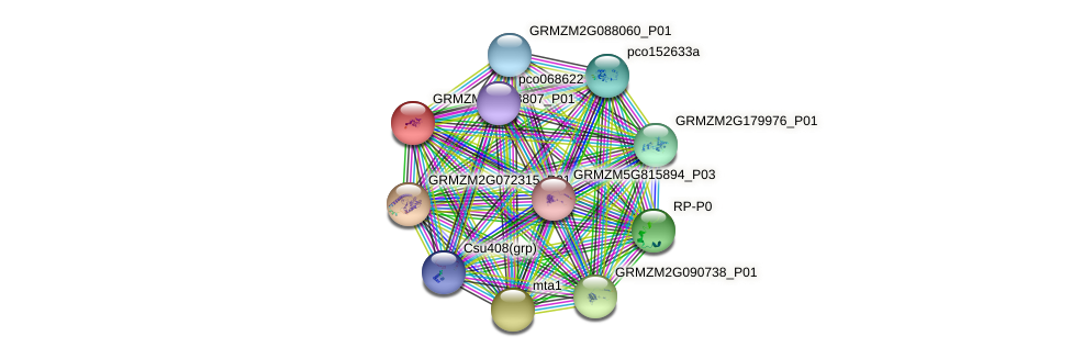 100281971 protein (Zea mays) - STRING interaction network