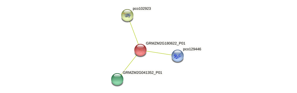 100283557 protein (Zea mays) - STRING interaction network