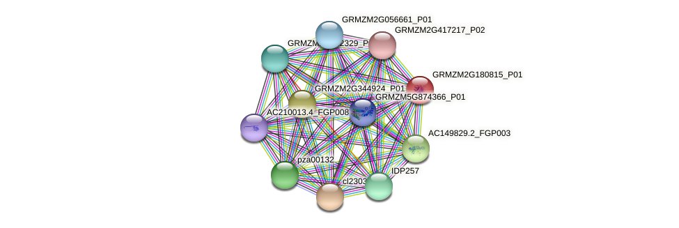 GRMZM2G180815_P01 protein (Zea mays) - STRING interaction network