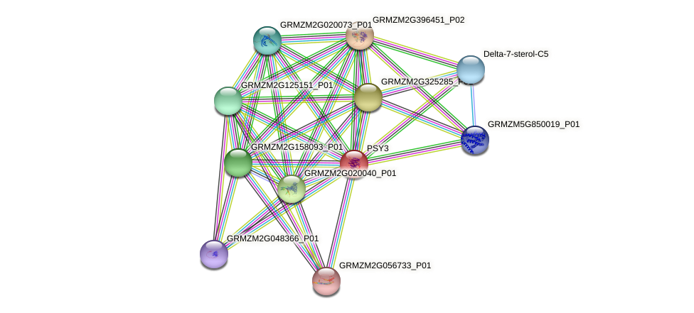 103645541 protein (Zea mays) - STRING interaction network
