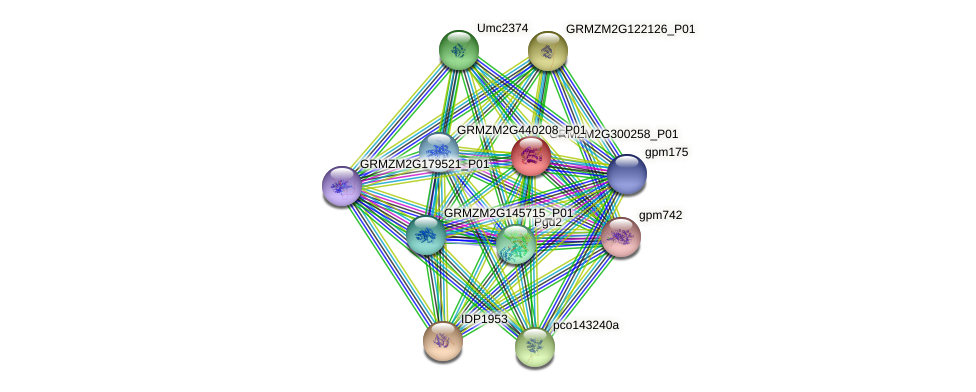 Zm.8786 protein (Zea mays) - STRING interaction network