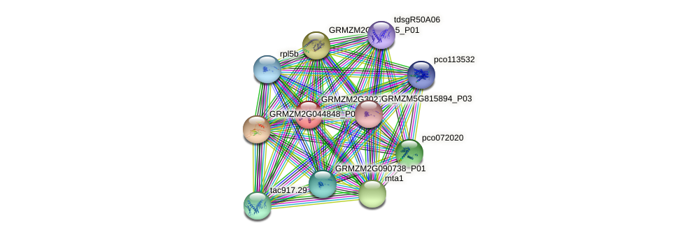 100193258 protein (Zea mays) - STRING interaction network