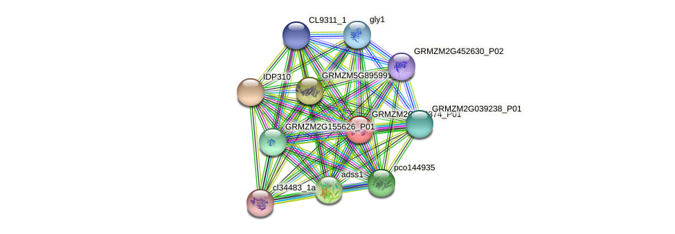 Zm.81027 protein (Zea mays) - STRING interaction network