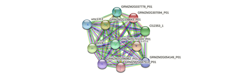 GRMZM2G307094_P01 protein (Zea mays) - STRING interaction network