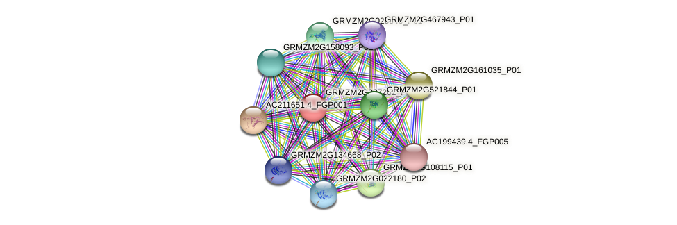Zm.32879 protein (Zea mays) - STRING interaction network