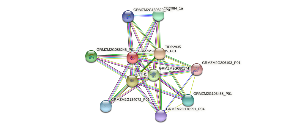 Zm.94732 protein (Zea mays) - STRING interaction network