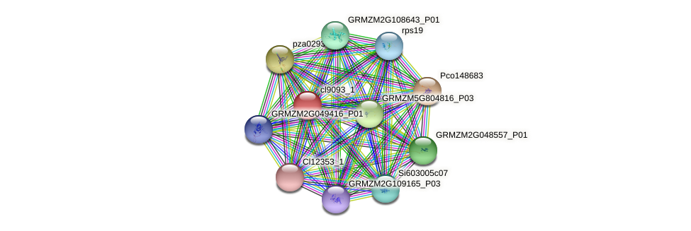 cl9093_1 protein (Zea mays) - STRING interaction network