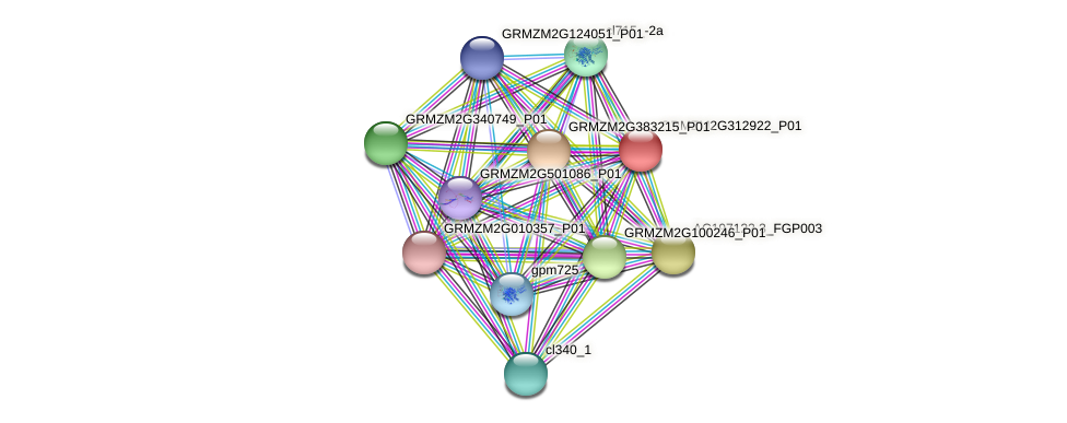 GRMZM2G312922_P01 protein (Zea mays) - STRING interaction network