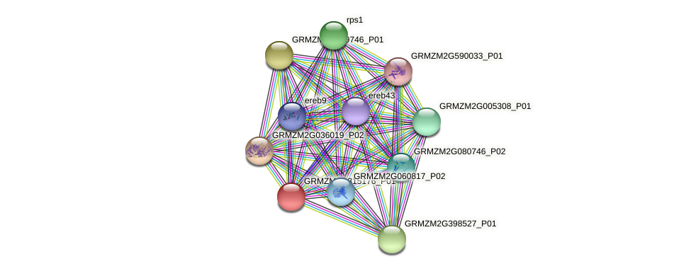 103627634 protein (Zea mays) - STRING interaction network