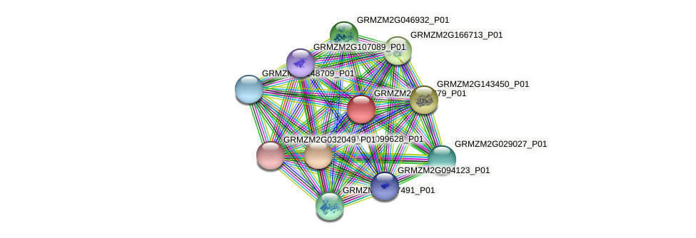 GRMZM2G316679_P01 protein (Zea mays) - STRING interaction network