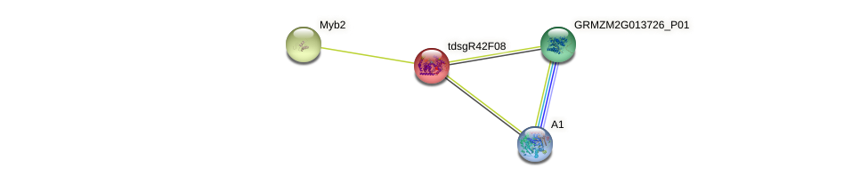 GRMZM2G319965_P01 protein (Zea mays) - STRING interaction network