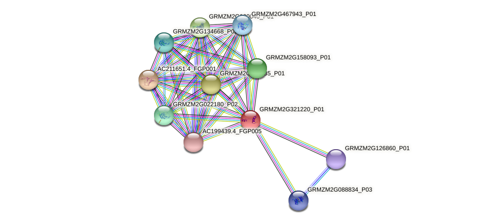 GRMZM2G321220_P01 protein (Zea mays) - STRING interaction network