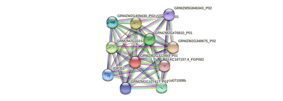 GRMZM2G322493_P01 protein (Zea mays) - STRING interaction network