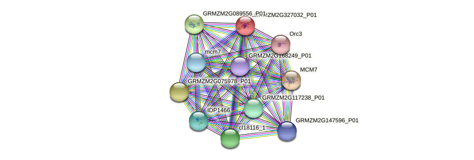 GRMZM2G327032_P01 protein (Zea mays) - STRING interaction network